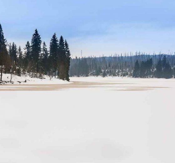 Harz Wandern Winterwandern Oderteich