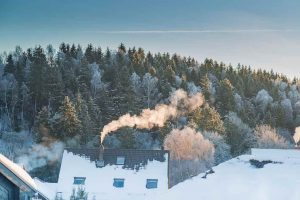 Snow in the Harz Mountains