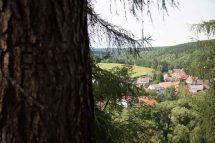 Harz Königshütte