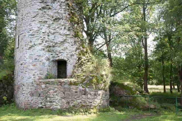 Harz Königshütte Burgruine