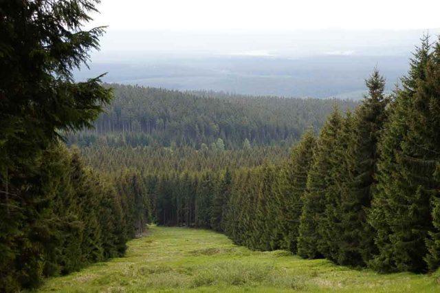 Harz Abenteuer Wandern Römer im Harz