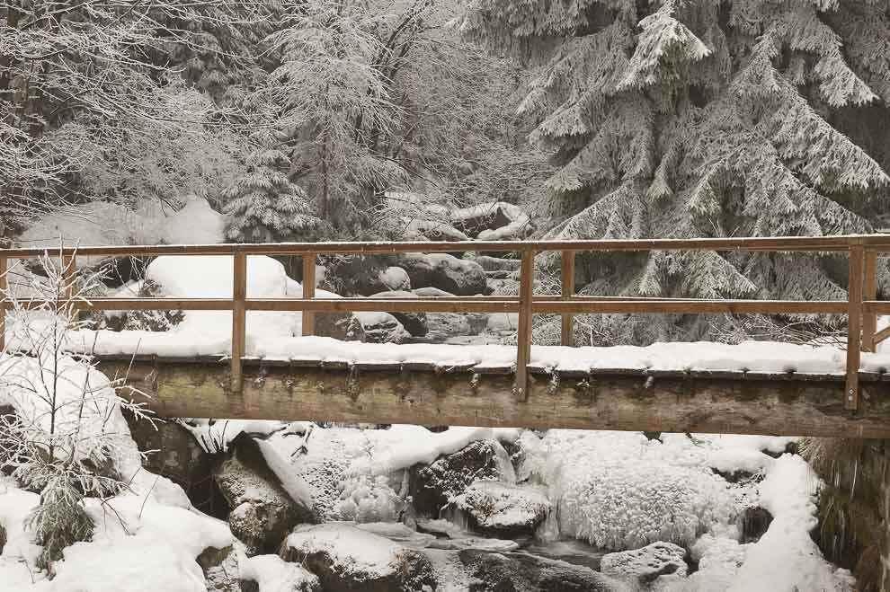 Sneeuwschoenwandelen in het Harzgebergte Steinerne Renne