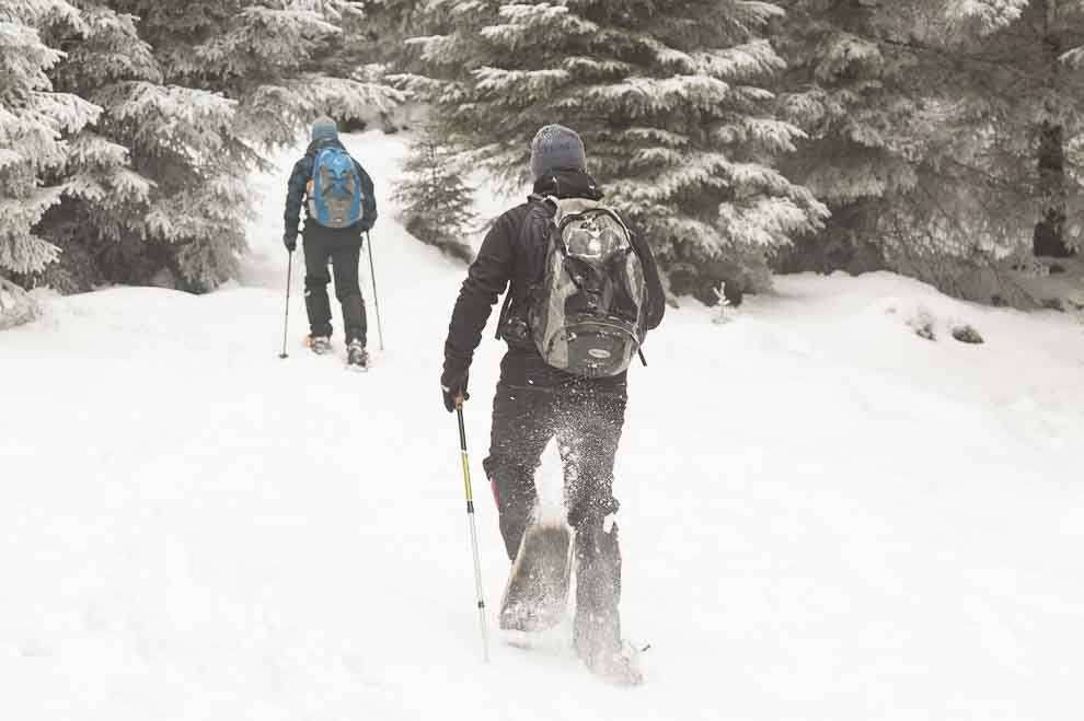 Snowshoeing in the Harz Mountains