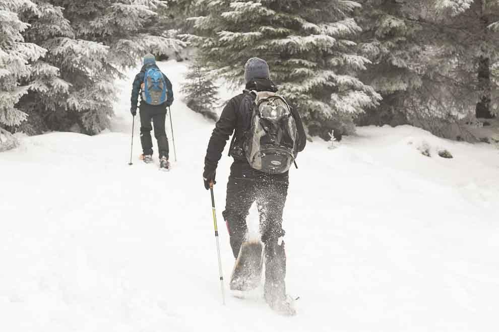 Sneeuwschoenwandelen in het Harzgebergte