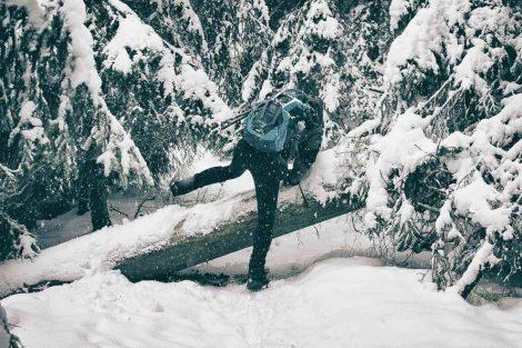Torfhaus Harz - Winter Hike