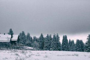 Harz Torfhaus