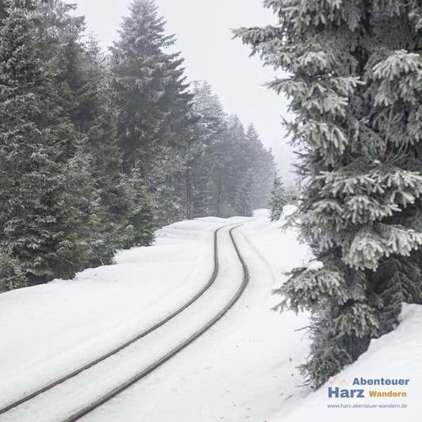 Tracks of the Brocken Railway on Goetheweg