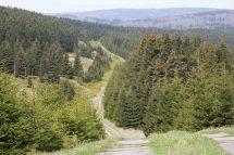 Wandelen in het Harzgebergte - Harzer Grenzweg
