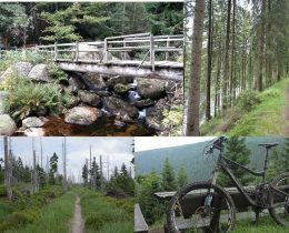 Mountainbike Tour Harz