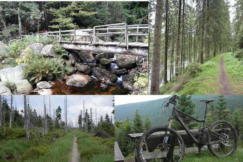 Mountainbike Tour Harz