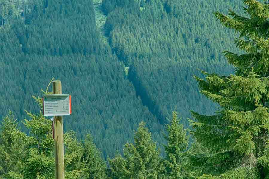 Wurmberg im Harz - Ulmer Weg