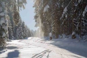 Tobogganing in the Harz Mountains - Toboggan runs in the Harz Mountains